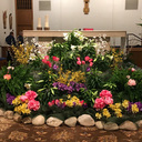 2019 - Our First Easter with Fr. Richard, Pastor photo album thumbnail 1